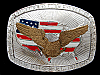 PJ01137 VINTAGE 1970s **UNITED WE STAND GOD BLESS AMERICA** PATRIOTIC BUCKLE