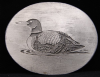 HH30138 VINTAGE 1983 ***DUCK ON WATER*** SISKIYOU PEWTER BUCKLE