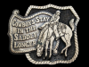 KE01109 VINTAGE 1980 **COWBOYS STAY IN THE SADDLE LONGER** BRASSTONE BELT BUCKLE
