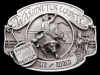 COOL VINTAGE 1989 WASHINGTON COUNTY FAIR & RODEO BUCKLE