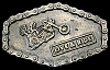 KJ04129 COOL VINTAGE 1976 **LIVE & RIDE** CHOPPER CHAIN EDGE BRASSTONE BUCKLE