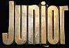 KJ08108 *NOS* VINTAGE 1970s CUT-OUT NAME ***JUNIOR*** SOLID BRASS BUCKLE