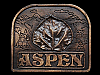 LK15173 GREAT VINTAGE 1976 ***ASPEN COLORADO*** SOUVENIR BELT BUCKLE