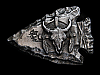 NC07107 VINTAGE 1988 **BUFFALO SKULL** ARROWHEAD SHAPED BELT BUCKLE