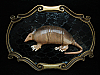 OA07117 *NOS* VINTAGE 1970s **ARMADILLO** BRASSTONE RAINTREE BELT BUCKLE