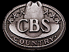 JI21152 VERY COOL VINTAGE 1970s ***CBS RECORDS*** COUNTRY BELT BUCKLE